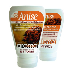Aroma Care & Color Nr.03 Anise (Kupfer) 150ml